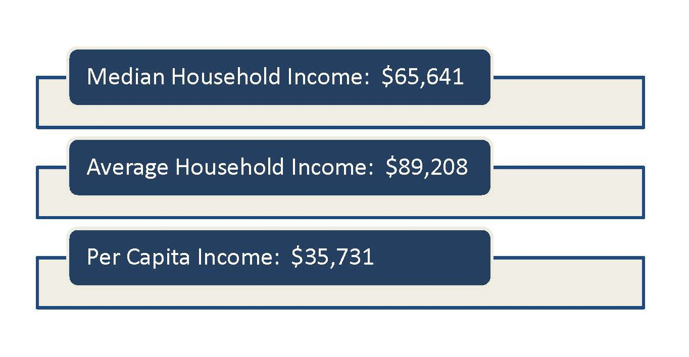 Income Profiles for city information.